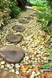 8249473-Log-path-in-rock-garden-Stock-Photo
