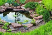 32040486-Pond-in-landscape-design--Stock-Photo